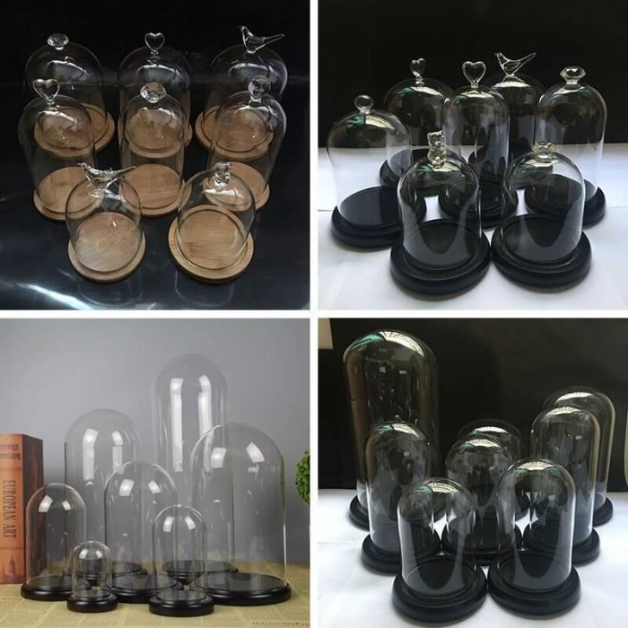 glass dome supplier china (1)