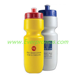 22 oz. Bike Bottle with Push-Pull Lid