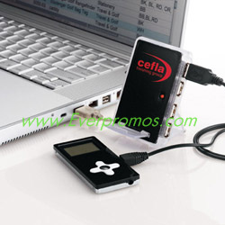 Charging Dock with 4-Port Hub